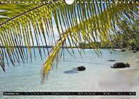 Traumziele weltweit - Bocas del Toro (Wandkalender 2019 DIN A4 quer) - Produktdetailbild 12