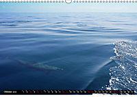 Traumziele weltweit - Bocas del Toro (Wandkalender 2019 DIN A3 quer) - Produktdetailbild 10
