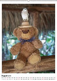 Travelling Teddy Kuba Edition 2019 (Wandkalender 2019 DIN A2 hoch) - Produktdetailbild 8