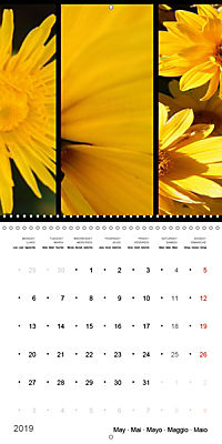 Trilogy of flower colours (Wall Calendar 2019 300 × 300 mm Square) - Produktdetailbild 5
