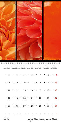 Trilogy of flower colours (Wall Calendar 2019 300 × 300 mm Square) - Produktdetailbild 3