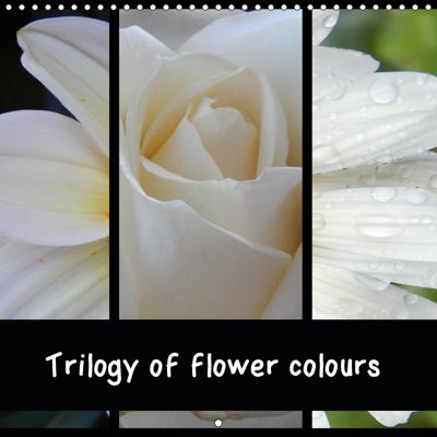 Trilogy of flower colours (Wall Calendar 2019 300 × 300 mm Square), Martina Busch