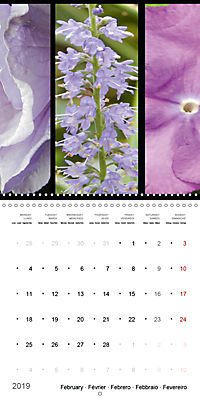Trilogy of flower colours (Wall Calendar 2019 300 × 300 mm Square) - Produktdetailbild 2