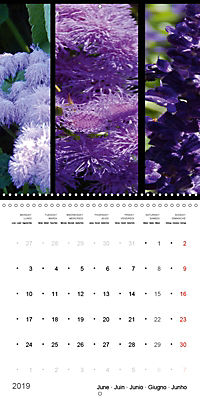 Trilogy of flower colours (Wall Calendar 2019 300 × 300 mm Square) - Produktdetailbild 6