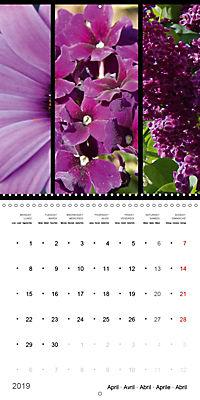 Trilogy of flower colours (Wall Calendar 2019 300 × 300 mm Square) - Produktdetailbild 4