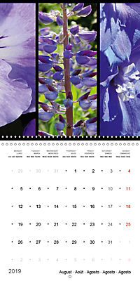 Trilogy of flower colours (Wall Calendar 2019 300 × 300 mm Square) - Produktdetailbild 8
