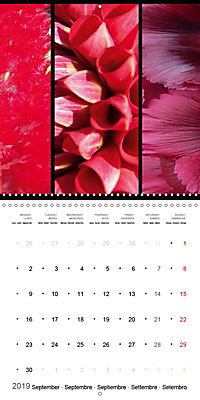 Trilogy of flower colours (Wall Calendar 2019 300 × 300 mm Square) - Produktdetailbild 9