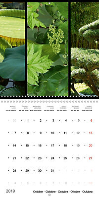 Trilogy of flower colours (Wall Calendar 2019 300 × 300 mm Square) - Produktdetailbild 10