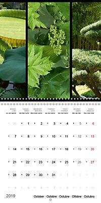 Trilogy of flower colours (Wall Calendar 2019 300 × 300 mm Square) - Produktdetailbild 10