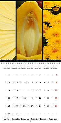 Trilogy of flower colours (Wall Calendar 2019 300 × 300 mm Square) - Produktdetailbild 12