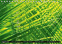 Tropenfeeling - Fernwehbaum Kokospalme (Tischkalender 2019 DIN A5 quer) - Produktdetailbild 7