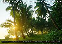 Tropenfeeling - Fernwehbaum Kokospalme (Tischkalender 2019 DIN A5 quer) - Produktdetailbild 9