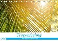 Tropenfeeling - Fernwehbaum Kokospalme (Tischkalender 2019 DIN A5 quer), Kerstin Waurick