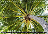 Tropenfeeling - Fernwehbaum Kokospalme (Tischkalender 2019 DIN A5 quer) - Produktdetailbild 2
