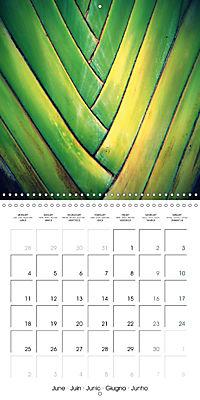 Tropical Greenery (Wall Calendar 2018 300 × 300 mm Square) - Produktdetailbild 6
