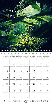 Tropical Greenery (Wall Calendar 2018 300 × 300 mm Square) - Produktdetailbild 9