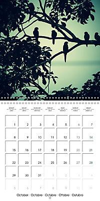 Tropical Greenery (Wall Calendar 2018 300 × 300 mm Square) - Produktdetailbild 10