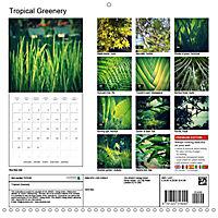 Tropical Greenery (Wall Calendar 2018 300 × 300 mm Square) - Produktdetailbild 13