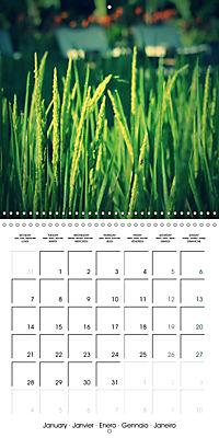 Tropical Greenery (Wall Calendar 2019 300 × 300 mm Square) - Produktdetailbild 1