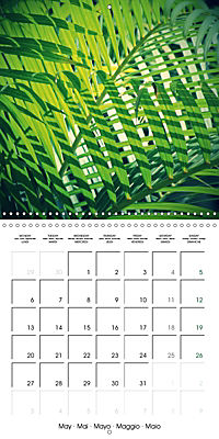 Tropical Greenery (Wall Calendar 2019 300 × 300 mm Square) - Produktdetailbild 5