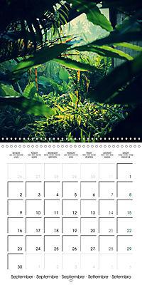 Tropical Greenery (Wall Calendar 2019 300 × 300 mm Square) - Produktdetailbild 9