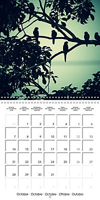 Tropical Greenery (Wall Calendar 2019 300 × 300 mm Square) - Produktdetailbild 10