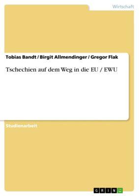 Tschechien auf dem Weg in die EU / EWU, Birgit Allmendinger, Tobias Bandt, Gregor Flak