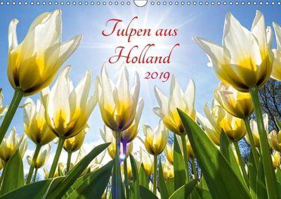 Tulpen aus Holland (Wandkalender 2019 DIN A3 quer), Henry Jager
