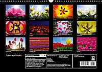 Tulpen aus Holland (Wandkalender 2019 DIN A3 quer) - Produktdetailbild 1