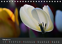 Tulpen - die bunte Vielfalt (Tischkalender 2019 DIN A5 quer) - Produktdetailbild 2