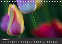 Tulpen - die bunte Vielfalt (Tischkalender 2019 DIN A5 quer) - Produktdetailbild 3