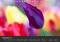 Tulpen - die bunte Vielfalt (Tischkalender 2019 DIN A5 quer) - Produktdetailbild 12
