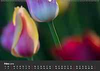 Tulpen - die bunte Vielfalt (Wandkalender 2019 DIN A2 quer) - Produktdetailbild 3