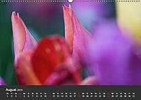 Tulpen - die bunte Vielfalt (Wandkalender 2019 DIN A2 quer) - Produktdetailbild 8