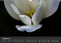 Tulpen - die bunte Vielfalt (Wandkalender 2019 DIN A3 quer) - Produktdetailbild 10