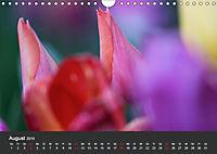 Tulpen - die bunte Vielfalt (Wandkalender 2019 DIN A4 quer) - Produktdetailbild 8