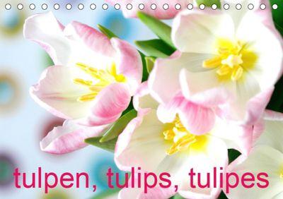 Tulpen, Tulips, Tulipes (Tischkalender 2019 DIN A5 quer), Gisela Kruse