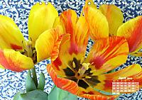 Tulpen, Tulips, Tulipes (Tischkalender 2019 DIN A5 quer) - Produktdetailbild 4