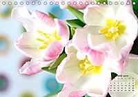 Tulpen, Tulips, Tulipes (Tischkalender 2019 DIN A5 quer) - Produktdetailbild 6