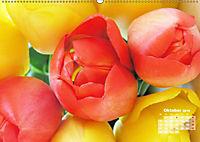 Tulpen, Tulips, Tulipes (Wandkalender 2019 DIN A2 quer) - Produktdetailbild 10
