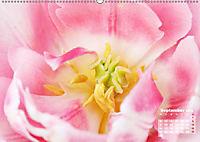 Tulpen, Tulips, Tulipes (Wandkalender 2019 DIN A2 quer) - Produktdetailbild 9