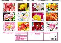 Tulpen, Tulips, Tulipes (Wandkalender 2019 DIN A2 quer) - Produktdetailbild 13