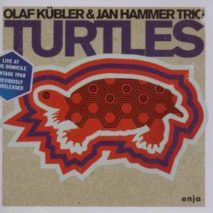 Turtles, Olaf Knbler, Jan Hammer