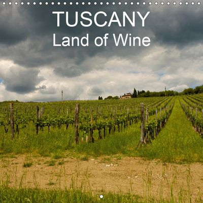 TUSCANY Land of Wine (Wall Calendar 2019 300 × 300 mm Square), Gianluigi fiori