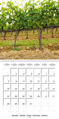 TUSCANY Land of Wine (Wall Calendar 2019 300 × 300 mm Square) - Produktdetailbild 1