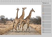 Twigas - Giraffen (Tischkalender 2019 DIN A5 quer) - Produktdetailbild 2
