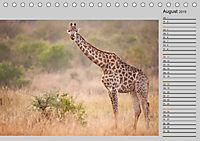 Twigas - Giraffen (Tischkalender 2019 DIN A5 quer) - Produktdetailbild 8