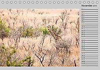 Twigas - Giraffen (Tischkalender 2019 DIN A5 quer) - Produktdetailbild 11