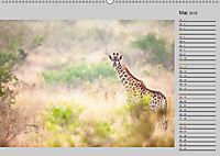 Twigas - Giraffen (Wandkalender 2019 DIN A2 quer) - Produktdetailbild 5
