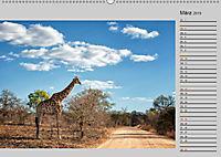 Twigas - Giraffen (Wandkalender 2019 DIN A2 quer) - Produktdetailbild 3